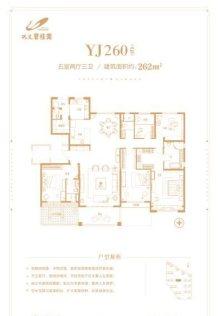 262㎡五室户型